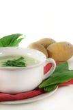 Wild garlic soup Royalty Free Stock Photos