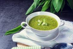 Wild garlic soup. A fresh Wild garlic soup royalty free stock photo