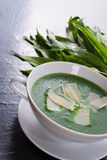 Wild garlic soup with Parmesan Stock Photography