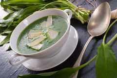 Wild garlic soup with Parmesan Stock Images