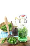 Wild garlic tincture in a bottle Royalty Free Stock Photography