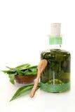 Wild garlic tincture Royalty Free Stock Images