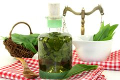 Wild garlic tincture Stock Photos