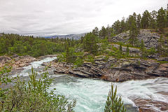 Wild glacier river Stock Photography