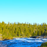 Wild glacier river Royalty Free Stock Photo