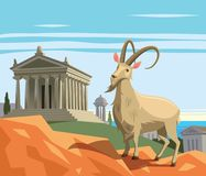 Wild goat in ancient Greek polis Stock Images
