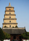 Wild goose pagoda Royalty Free Stock Photo