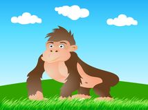 wild gorilla Royaltyfri Foto