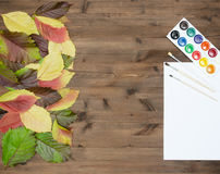 Wild grapes multicolored autumn leaves watercolor paints and bru Royalty Free Stock Images