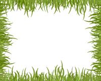 Wild grass frame Royalty Free Stock Images