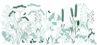 Wild grasses and a butterfly stock illustration