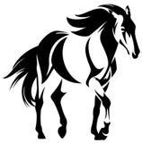 wild häst Fotografering för Bildbyråer
