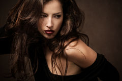 Wild hair. Beautiful brunette with long wild hair portrait, studio shot Royalty Free Stock Images