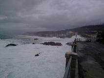 Wild hav Fotografering för Bildbyråer