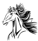 Wild head Horse vector Stock Images