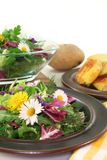 Wild herb salad. With goat cheese baked in a potato crust Royalty Free Stock Images