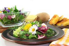 Wild herb salad. With goat cheese baked in a potato crust stock photography