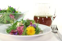 Wild herb salad Stock Photo