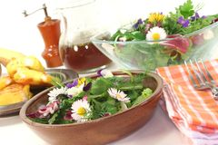 Wild herb salad with goat cheese Stock Photo