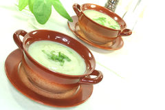Wild herb soup royalty free stock images