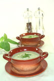 Wild herb soup Royalty Free Stock Photography