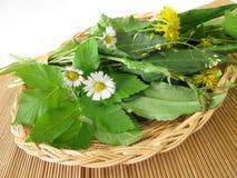 Wild herbs in basket. Fresh wild herbs in basket Stock Photos