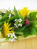 Wild herbs on the tray. Bouquet of wild herbs on the tray royalty free stock photography