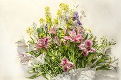 Wild herbs with white and pink flowers of Alstroemeria and purple iris with openwork border Stock Photos