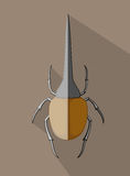 Wild Hercules Beetle Insect. Vector Illustration Vector Illustration