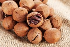 Wild hickory nuts. On sack Royalty Free Stock Photography