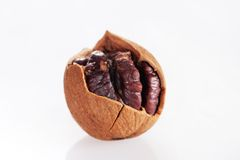 Wild hickory nuts. On white background Stock Photos
