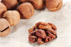 Wild hickory nuts Stock Image