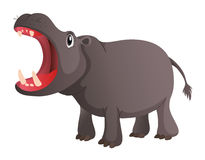 Wild hippo opens its mouth Stock Photography