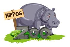 Wild hippo at the zoo. Illustration royalty free illustration
