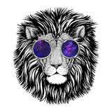 Wild hipster lion Image for tattoo, logo, emblem, badge design Stock Photography