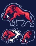 Wild Hog mascot Royalty Free Stock Photo