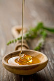 Wild honey. Wooden spoon with wild honey falling into it royalty free stock photos
