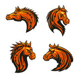 Wild horse and angry mustang stallion mascots. With head of brown horse with alert ears and fiery mane, adorned by tribal flame ornaments Royalty Free Stock Images