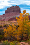 Wild Horse Butte Peak of the Fall in Utah Vertical Composition Stock Photography