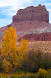 Wild Horse Butte Peak of the Fall in Utah Vertical Composition Stock Image