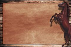 Wild Horse Copy Space Royalty Free Stock Image