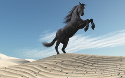 Wild horse. In dune landscape. This is a 3d render illustration Stock Photos