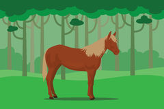 Wild horse in jungle alone with tree forest as background. Wild horse in jungle alone with tree jungle as background vector illustration Royalty Free Stock Image