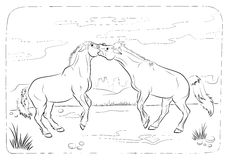 Wild horses - coloring book Stock Images