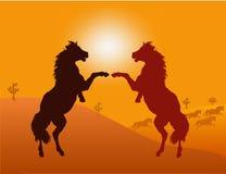 Wild Horses - vector. Wild Horses and Sun - vector Illustration vector illustration