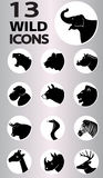 Wild icons collection Royalty Free Stock Photos