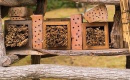 Wild insecthotel in detail Royalty-vrije Stock Afbeeldingen