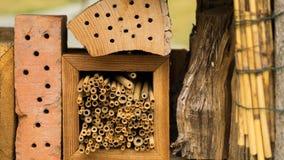 Wild insecthotel in detail Stock Afbeeldingen