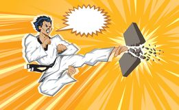 Wild jumping side kick. Stylized martial artist. With Vector, everything is on layers for easy editing Stock Images