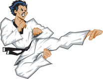Wild jumping side kick. Stylized martial artist doing sidekick Royalty Free Stock Image